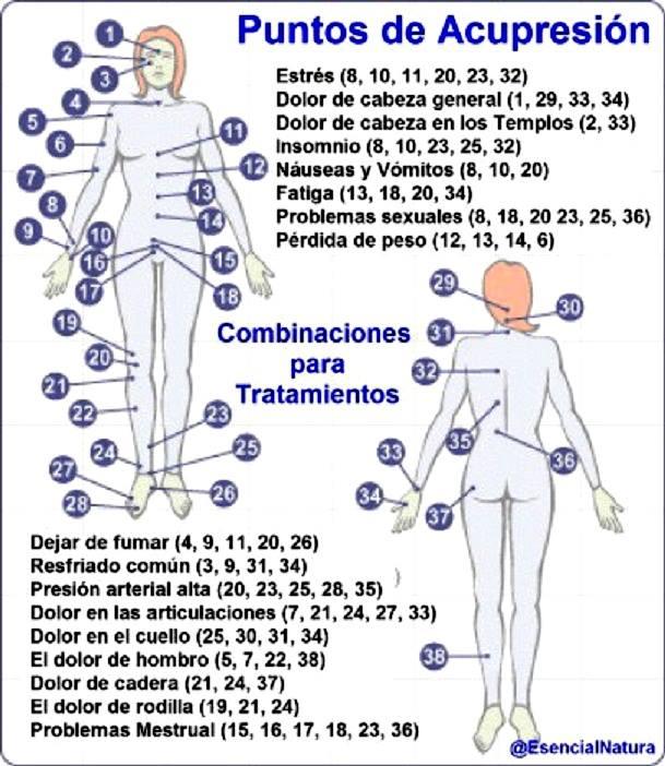 Sinpastillasraras medicina alternativa la acupresi n for El gran manual del cocinero pdf