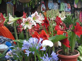 2016 Sajow Canangkan Menanam Dan Menggunakan Bunga Hidup