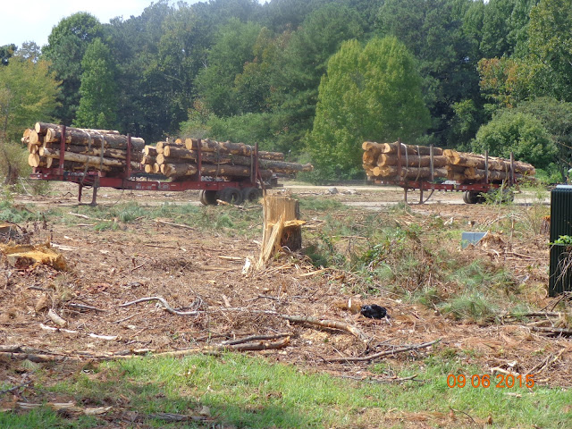 CASTLE LAKE MHP The 52 Acres Of That Section Park Sold To Fuqua Development Is Being Cleared For New Shopping Center Whole Foods Will Be One