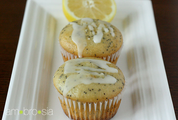 ambrosia: Lemon-Poppy Yogurt Muffins
