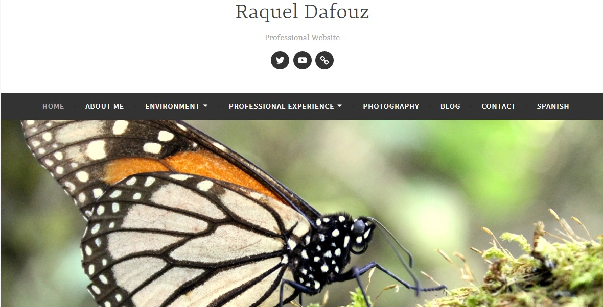 NEW!! Visit Raquel's Professional Website