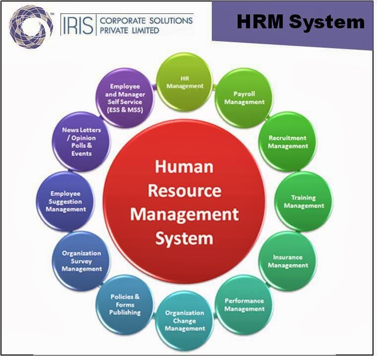 an analysis of successful organization and resource management The impact of strategic human resource management on organizational performance 102 the people who make up an organization -human resources- are.