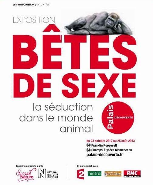animal sexe la guerre des sexes