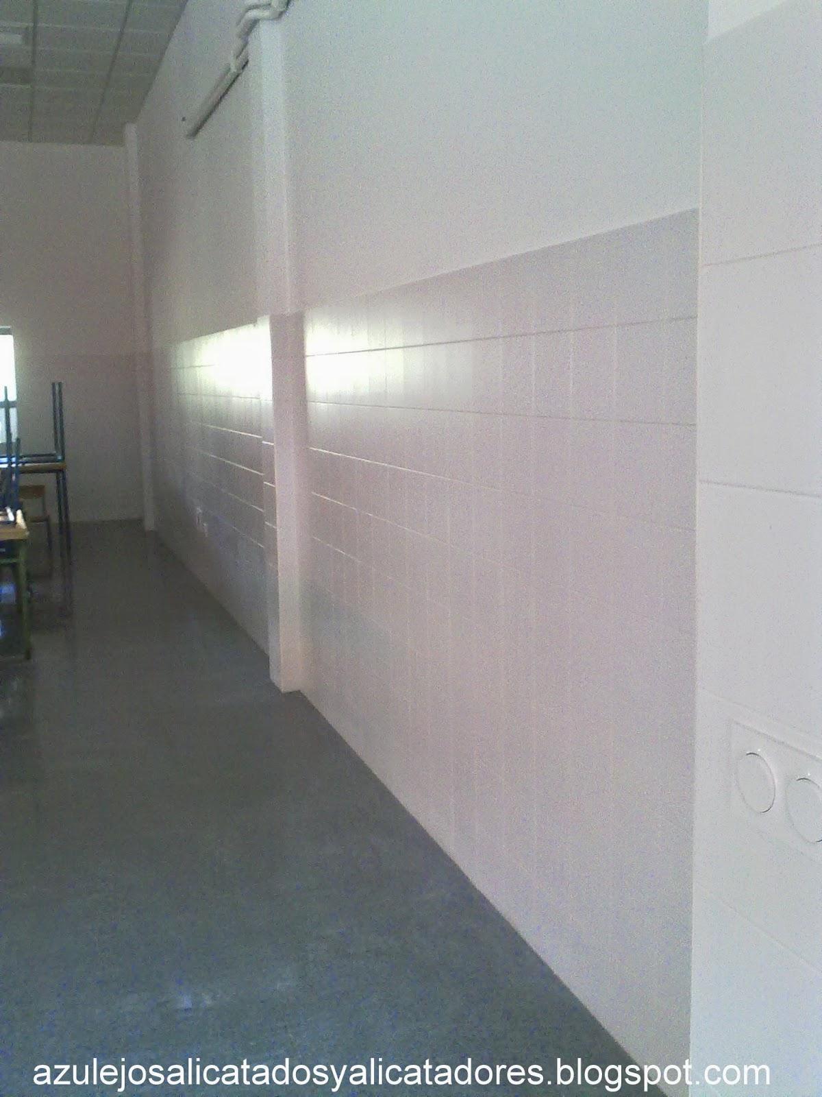 Azulejos alicatados y alicatadores azulejos alicatado for Salon los azulejos