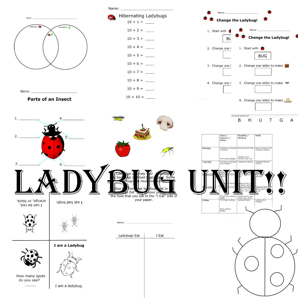 Ladybug kinder unit preschool powol packets you can download the whole unit here if youd like to just try out one of the activities i also have the make 10 spots activity available in a separate pooptronica Gallery