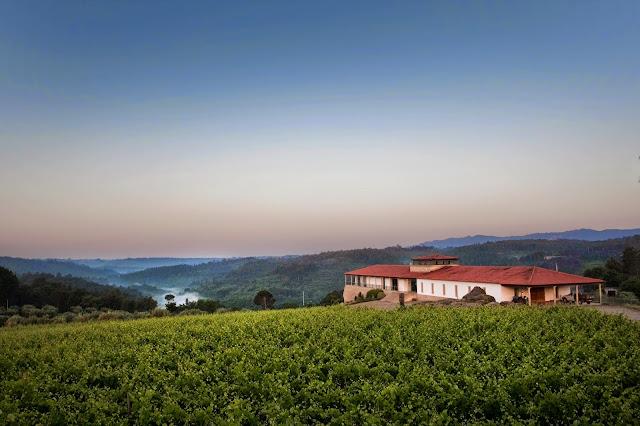 Divulgação: Quinta de Lemos apresentou sete novos vinhos da colheita 2010 - reservarecomendada.blogspot.pt