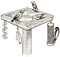 кормушки для птиц -2