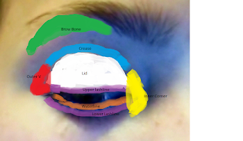 Where to Place Eyeshadow
