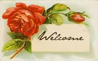 Benvenuti nel nostro blog