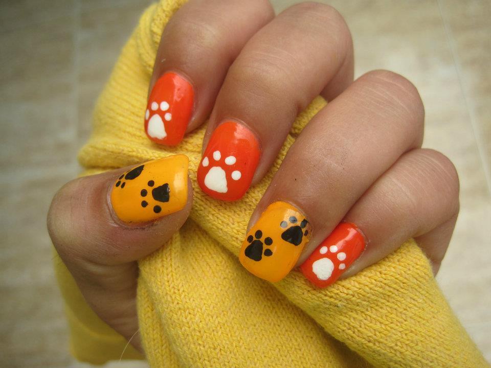 Uñas de huellas de perro.