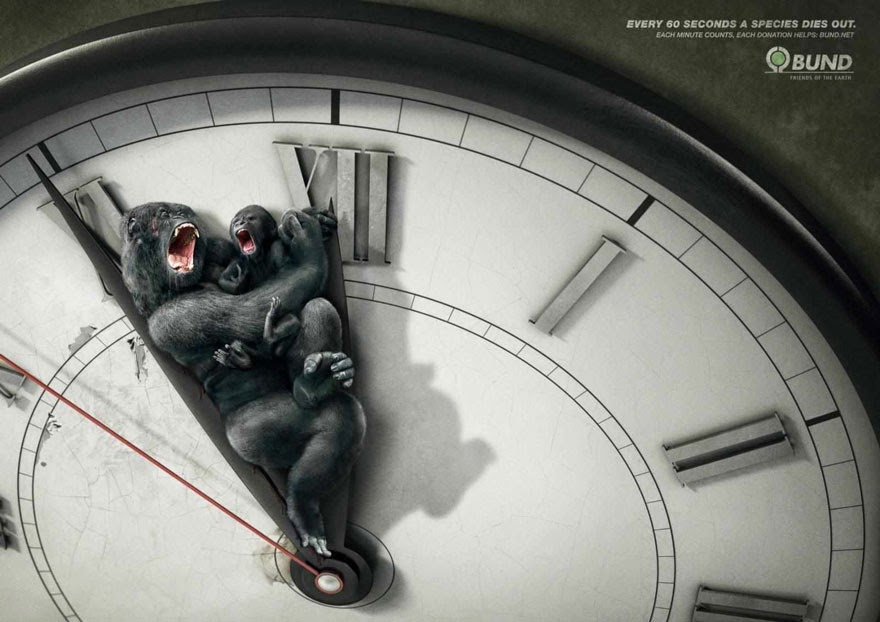 Every 60 Seconds A Species Dies Out. Each Minute Counts - 33 Powerful Animal Ad Campaigns That Tell The Uncomfortable Truth