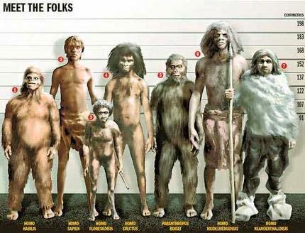 Eurasia estaba habitada por al menos cuatro especies humanas diferentes: