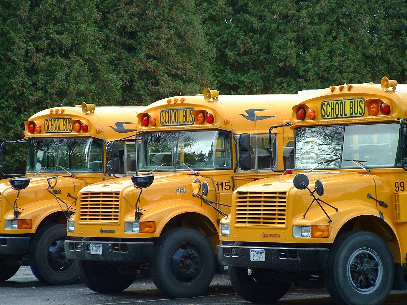 school, parents, bus