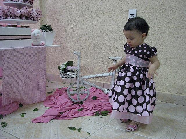 Moda Festa Rosa E Marrom 1 Ano