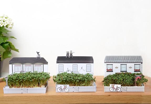 机の上にお庭を作るポストカード