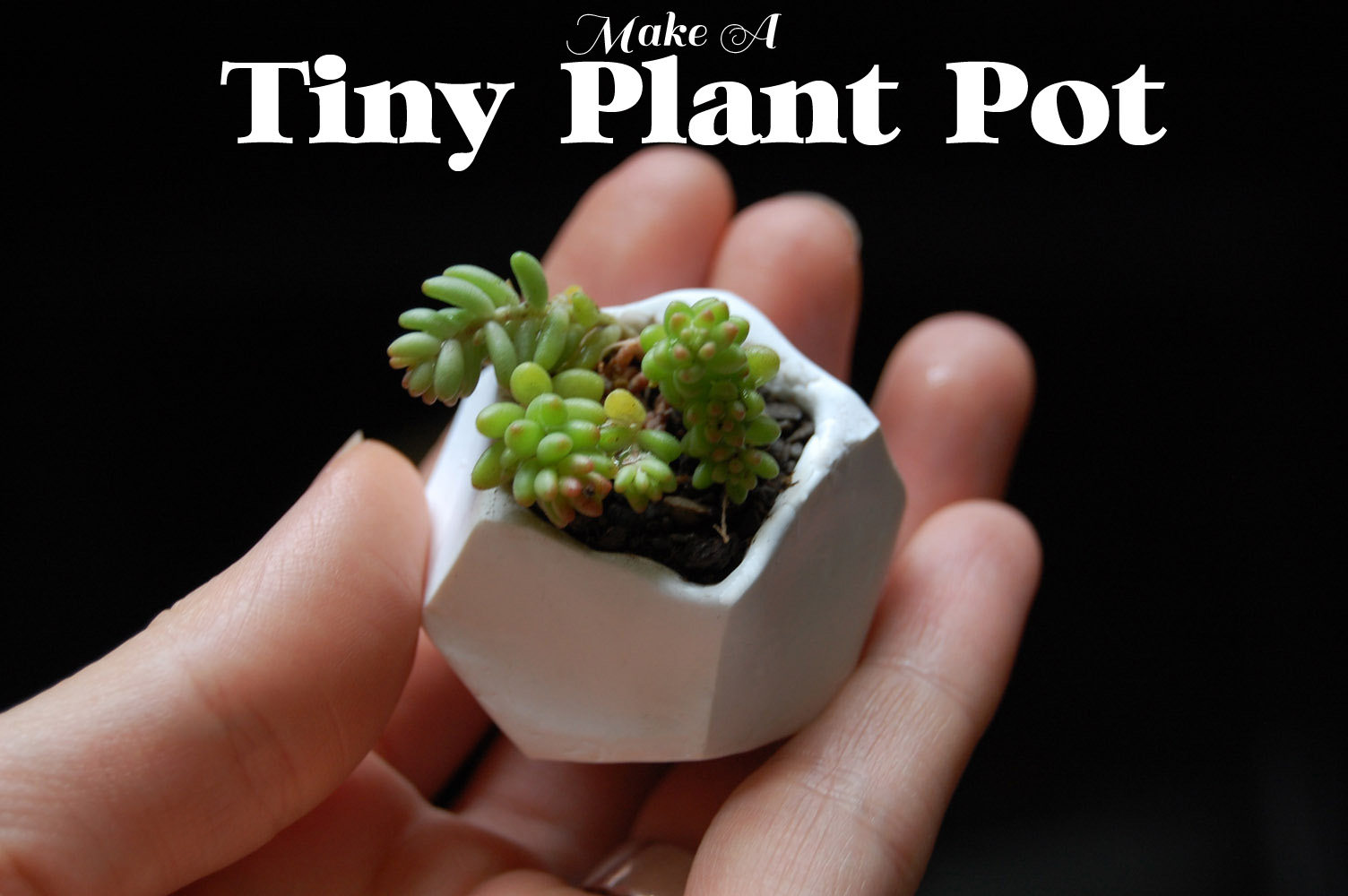 how to make bill and ben out of plant pots