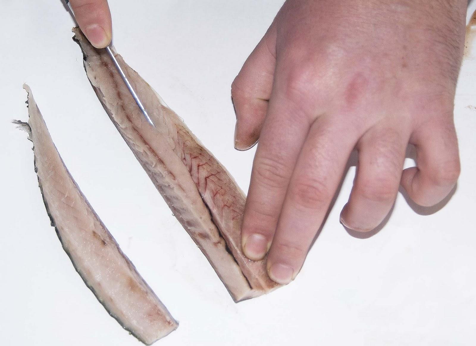 как сделать наживку для рыбы из манки
