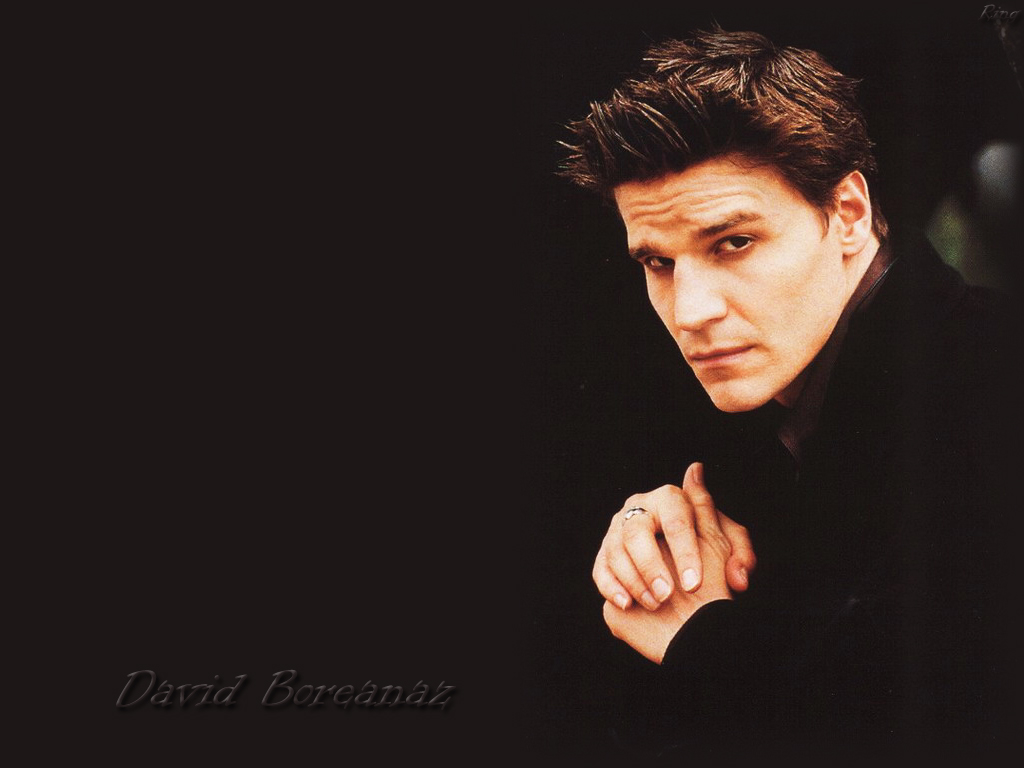http://1.bp.blogspot.com/-7xs16zsk7_Y/TV1ODGzR6FI/AAAAAAAAA7s/UtY1aBqVUpU/s1600/hot_most_handsome_Hollywood_actor_David-Boreanaz-david-boreanaz1.jpg