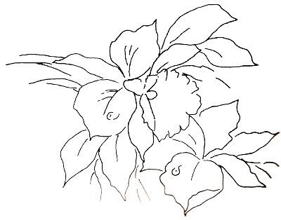 Riscos para Pintura em Tecido Flor
