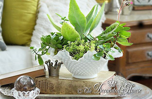 The Decorated House : Decorating with Milk Glass & Succulents