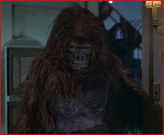 Thursday August 22 2013 & Hollywood Gorilla Men: Western Costume Gorilla !