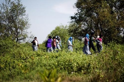 Diselakan Wisata Mangrove Wonorejo Jadi Tempat Mesum