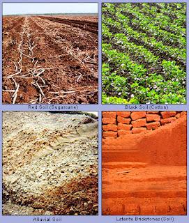 Indian Soils