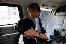 2012 Campaign Goes to The Dogs