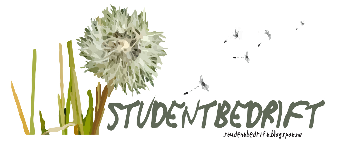 Studentbedrift