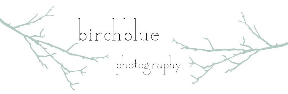 birchblue photography