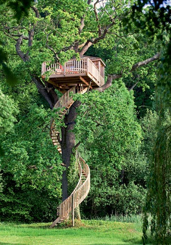 de nios pero no se pueden construir casas increbles tanto para poder vivir en la naturaleza como para sitios montaosos with construir casa en arbol