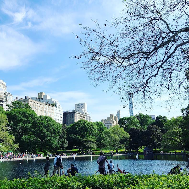 Central Park!!!