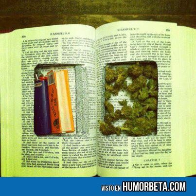 Esconder marihuana