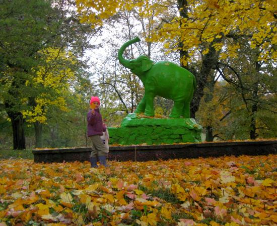 осень в парке, autumn, Lutsk
