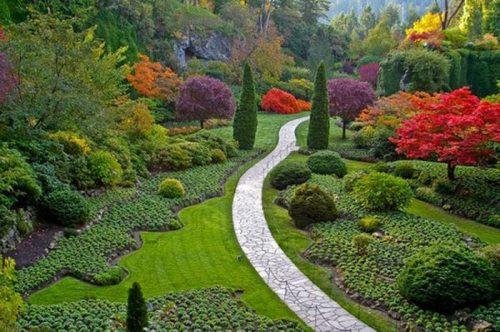 فن عمارة الحدائق المنزلية 2014  Beautiful-gardens-manly-5