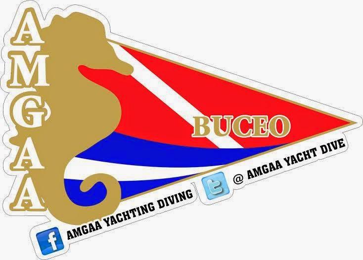 AMGAA BUCEO
