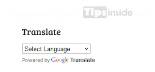 google translate for websites