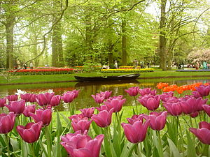 Tempat Wisata Di Belanda - Keukenhof Park