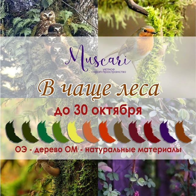 """Задание """"В чаще леса"""" 30/10"""