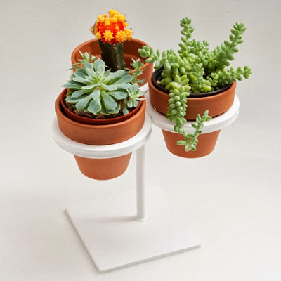 Contoh Desain Pot Unik Penghias Taman