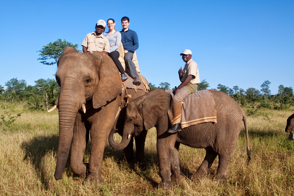 Following Our Safari we Gave