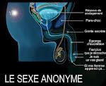 Le sexe anonyme