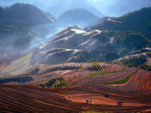 COOGLED: China Nature ...