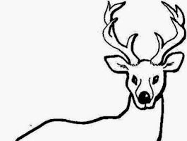Baby Deer Coloring Pages Printable