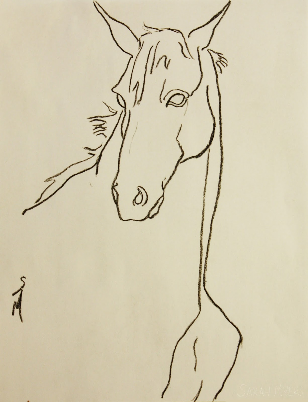 horse, study, line, drawing, art, sketch, charcoal, head, animal, Sarah, Myers, arte, equine, morgan, minimalist