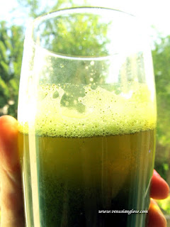 horsetail herbal drink for skin