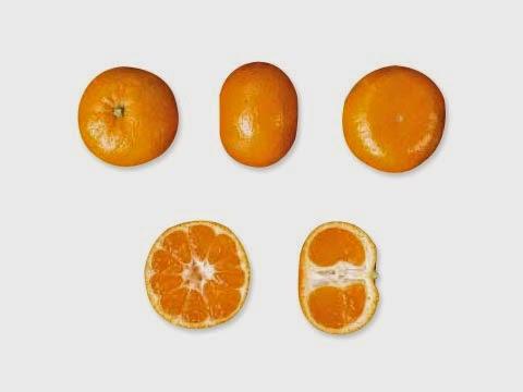 El nombre que los científicos (expatriados o siéndolo) para la mandarina es Citrus nobilis. Y si leéis esto entre los meses de octubre a febrero, se encuentran en temporada.
