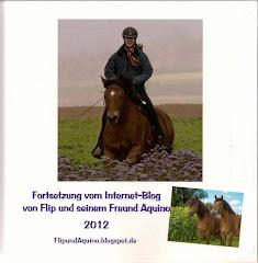 Blogbuch 2012: