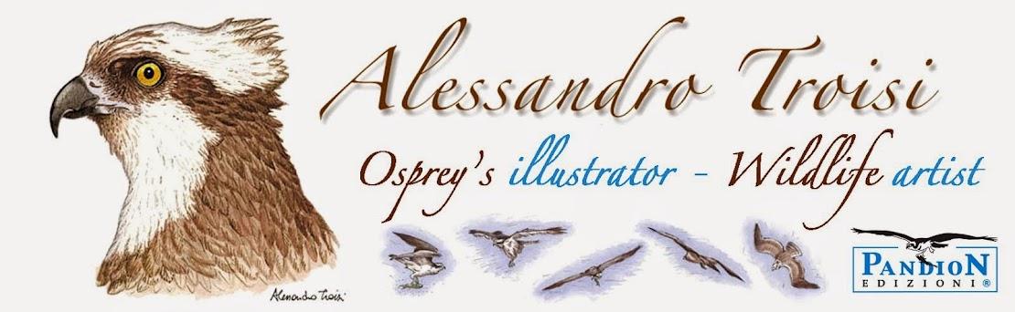Alessandro Troisi - Osprey's illustrator