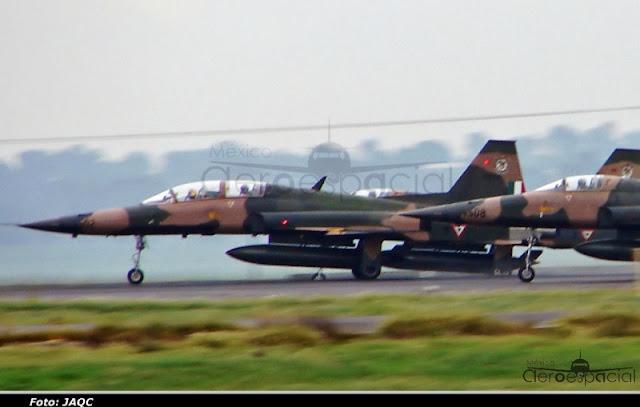 Nuevos aviones interceptores para la Fuerza Aérea Mexicana - Página 3 DSC09779